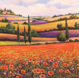 Fields of Poppies I