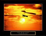 Passion: Hang Glider