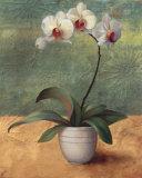 Mille Fleurs II