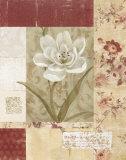 Wallpaper Tulip