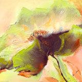 Mint Spring I