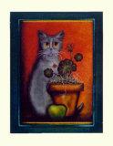 Framed Cat IV
