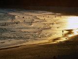 The Setting Sun Illuminates Surfers and Swimmers on Bondi Beach  Sydney  Australia