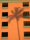 Palm Tree Shadow on Building Facade in the Art-Deco District of South Beach  Miami  Florida  USA