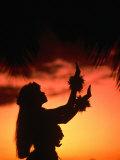 Silhouette of Hula Dancer on Waikiki Beach at Sunset  Waikiki  USA