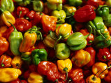 Capsicums at Brixton Market  Brixton  London  England