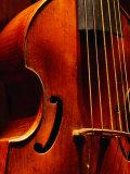 Stringed Instrument in Museum  Brussels  Belgium