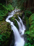 Sol Duc Falls Olympic National Park  Washington  USA