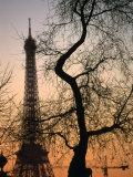 Sunset Over the Jardin Des Tuileries and Eiffel Tower  Paris  Ile-De-France  France