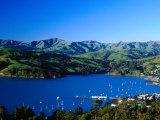 Akaroa Harbour  Banks Peninsula  Canterbury  New Zealand