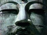 Face of Daibutsu (Great Buddha) Statue  Kamakura  Japan