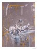 Swans I
