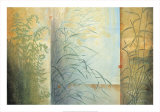 Ferns and Grasses