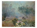 Fog  1874