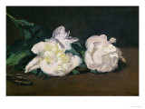 A Twig of White Peonies with Pruning Shears  1864