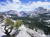 Tenaya Lake from Olstead Point on Tioga Pass  Yosemite National Park  California  USA