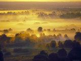 Sun Rise Over the Bryansk Forest  Bryansky Les Zapovednik  Russia