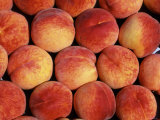Peaches (Prunus Persica) Europe