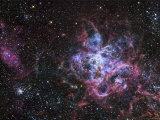 The Tarantula Nebula