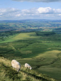 View North from Hay Bluff  with Distant Hay on Wye in Valley  Powys  Wales  United Kingdom