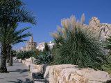 The Medina  Yasmine Hammamet  Tunisia  North Africa  Africa