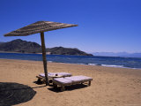 The Beach at Taba Heights  Gulf of Aqaba  Red Sea  Sinai  Egypt  North Africa  Africa
