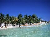 Isla Mujeres  Yucatan  Mexico  North America