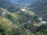 Banaue Terraced Rice Fields  UNESCO World Heritage Site  Island of Luzon  Philippines