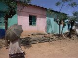Street Scene  Village of Abi-Adi  Tigre Region  Ethiopia  Africa