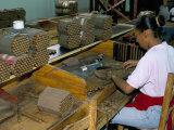 Leon Jimenes Cigar Factory  Town of Santiago  Saint Domingue (Santo Domingo)  Dominican Republic