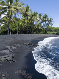 Punaluu Black Sand Beach  Island of Hawaii (Big Island)  Hawaii  USA