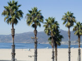 Santa Monica Beach  Santa Monica  California  USA