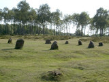 Nine Ladies Stone Circle  Derbyshire  England