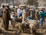 Weekly Market  Tahanoute  High Atlas Mountains  Morocco  North Africa  Africa