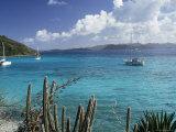 White Bay  Jost Van Dyke Island  British Virgin Islands  West Indies  Central America