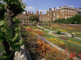 Sunken Gardens  Hampton Court Palace  Greater London  England  United Kingdom