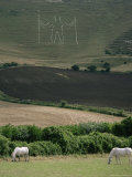 The Long Man  Wilmington  East Sussex  England  United Kingdom