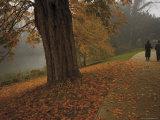 Couple Walking Through the Jephson Gardens in Autumn  Leamington Spa  Warwickshire  England