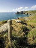 South West Devon Coastal Footpath Approaching Gammon Head  Prawle Point  South Hams  Devon  England
