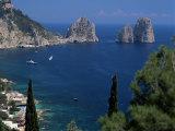 Faraglioni Rocks  Capri  Campania  Italy  Mediterranean