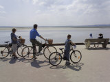 Family on Bicycles  Le Crotoy  Somme Estuary  Picardy  France