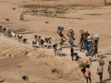 Women on Their Way to Washplace in the River Niger  Mali  Africa