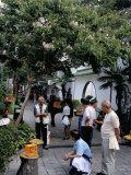 Yuen Po Street Bird Garden  Mong Kok  Kowloon  Hong Kong  China