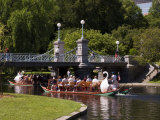 Lagoon Bridge and Swan Boat in the Public Garden  Boston  Massachusetts  United States of America