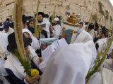 Sukot Festival  Jews in Prayer Shawls Holding Lulav and Etrog  Praying by the Western Wall  Israel
