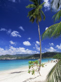 Grand Anse Beach  Grenada  Windward Islands  West Indies  Caribbean  Central America