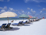 Beach  Longboat Key  Sarasota  Florida  USA