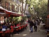 Cours Mirabeau  Aix-En-Provence  Bouches-Du-Rhone  Provence  France
