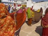 Group of Women Drying Their Saris by the Sacred Lake  Pushkar  Rajasthan State  India