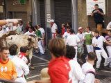 San Fermin  Running of the Bulls Festival  Pamplona  Navarra  Euskadi  Spain